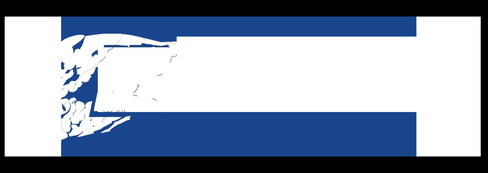 BlueMamba